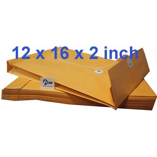 Envelope EX1216 Expandable 12X16X2 (10s)